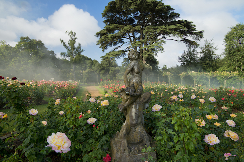 Blenheim Palace-Park and Gardens-Roses (2)