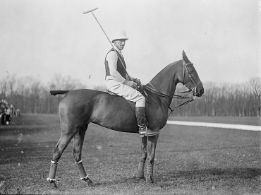 hästpolo ridning som hobby