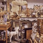 En upptäcktsfärd i en magisk värld - visningen av Stopalo Collection har påbörjats