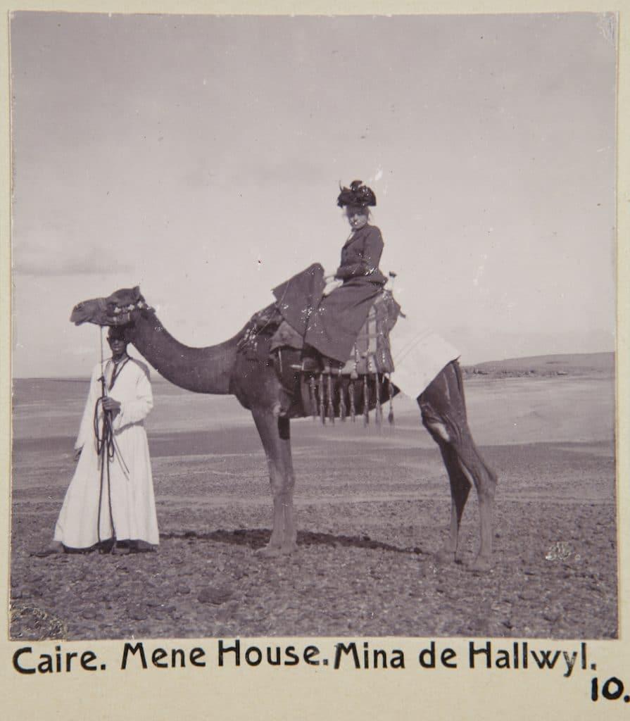 damsadel kamel Egypten