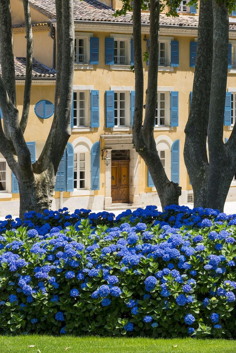 Chateau d'Esclans Domaines Sacha Lichine La Motte en Provence, France