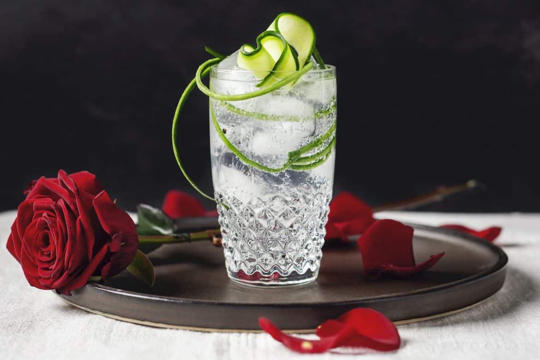 gin & tonic dagen drinktips