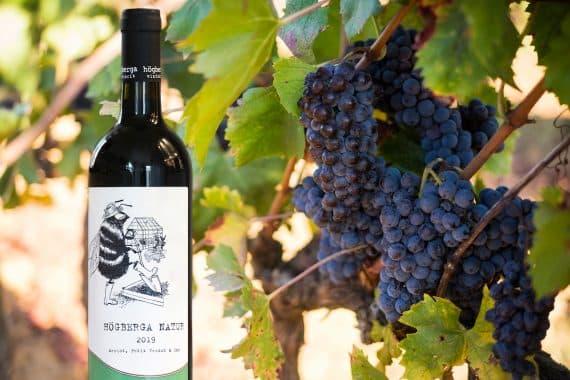 toscanska viner från Sverige Högberga Gård