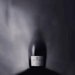 Oddbird Spumante - Det första alkoholfria vinet från Proseccoregionen