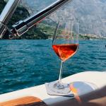 Smarta saker till sommaren - Magnetiska whisky- och vinglas i kristall