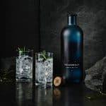 Nordiska toppbartenders har skapat en ny premium gin