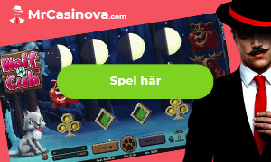 casino utan registrering på MrCasinova