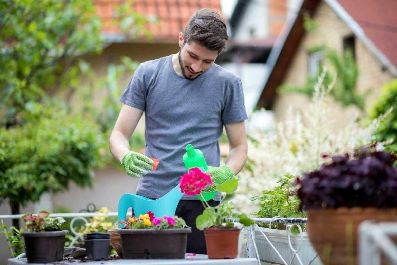 bästa produkter för hemmaodling och trädgård 2021