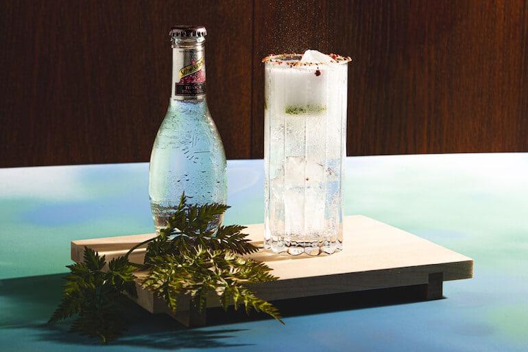 sveriges bästa gin & tonic recept sommaren 2021