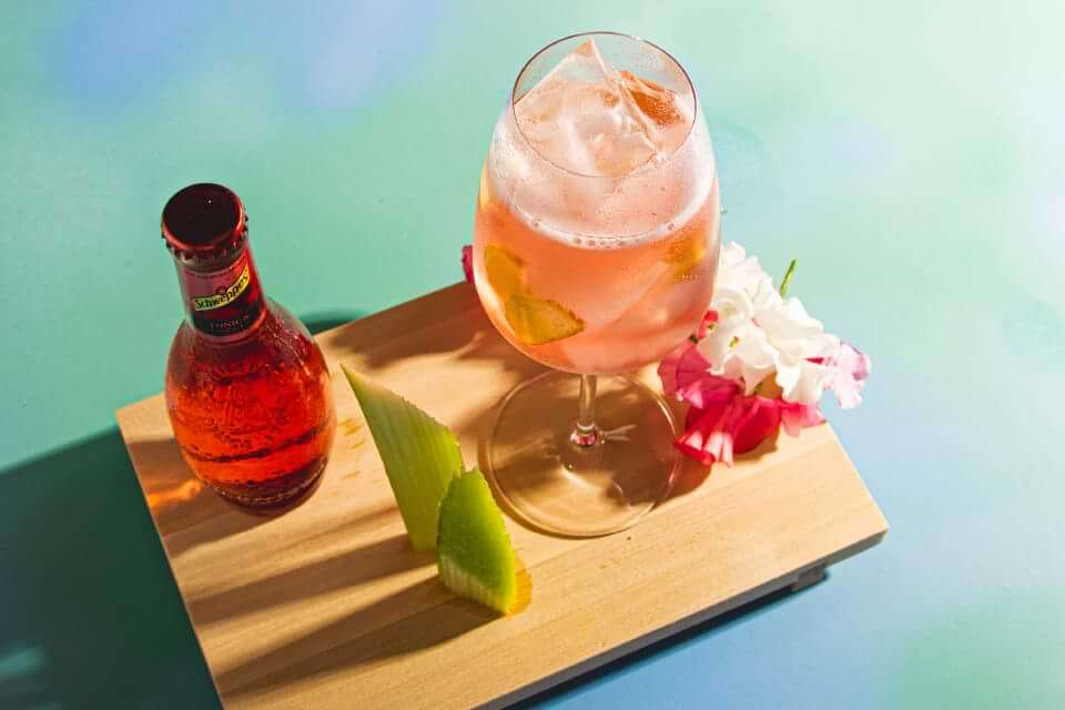 sveriges bästa gin and tonic recept 2021